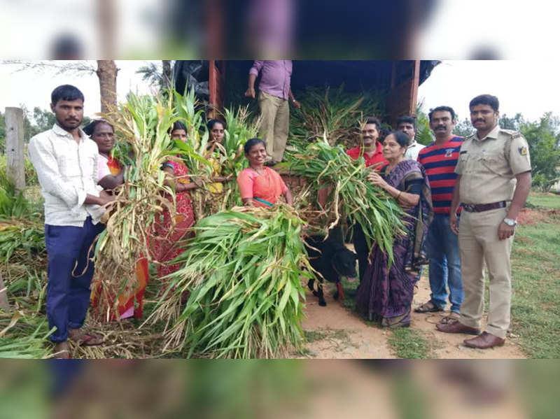 Veteran actress Leelavathi supplies fodder to flood hit region