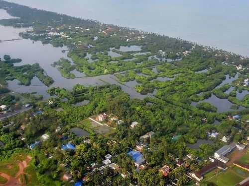 Kochi News, Latest Kochi News Headlines & Live Updates - Times of India