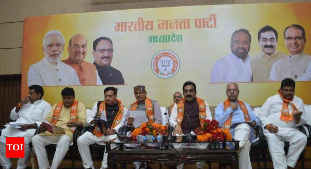 3cr new members in BJP, says Chouhan - Times of India