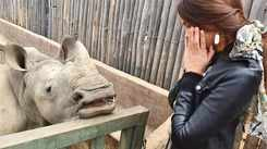Catriona Gray shares some of her pictures from the African safari