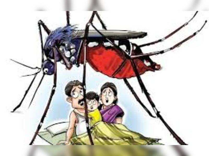 This monsoon, take these preventive measures for dengue!