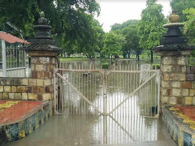 Madhya Pradesh: Heavy rain in Khajuraho leads to