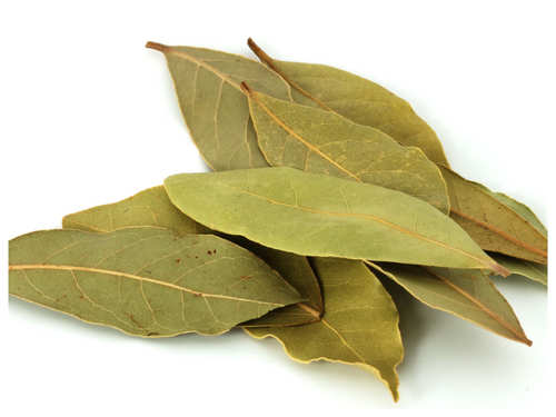 7 Effective Benefits Of Bay Leaves That You Need To Know The Times Of India