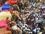 Dasara elephants reach Mysore Palace