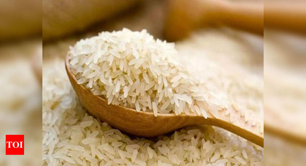 India needs new markets for rice exports, says industry - Times of India
