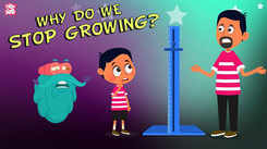 Children English Nursery Story 'Why Do We Stop Growing? | The Dr. Binocs Show' - Kids Nursery Stories In English