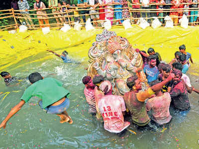 116 reasons not to immerse idols in Yamuna, but Delhi finds