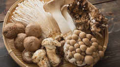 5 Health benefits of mushrooms