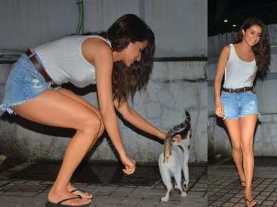 Pics: Shraddha Kapoor plays with a stray cat
