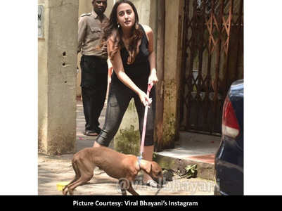 Pics: Natasha struggles to manage her dog