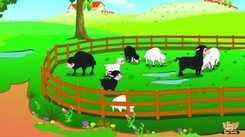 Children Songs | Nursery Rhymes & Baby Songs 'Baa Baaa Black Sheep - Bengali' - Kids Nursery Rhymes In Bengali