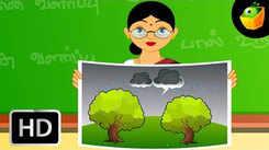 Popular Kids Tamil Nursery Rhyme 'Maram Valarpoom' - Kids Nursery Rhymes In Tamil