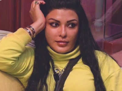 BB 13: A look at Koena Mitra's controversial life