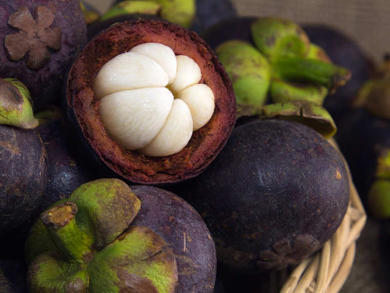 Kudam Puli For Weight Loss Is Kudam Puli The Next Big Thing For
