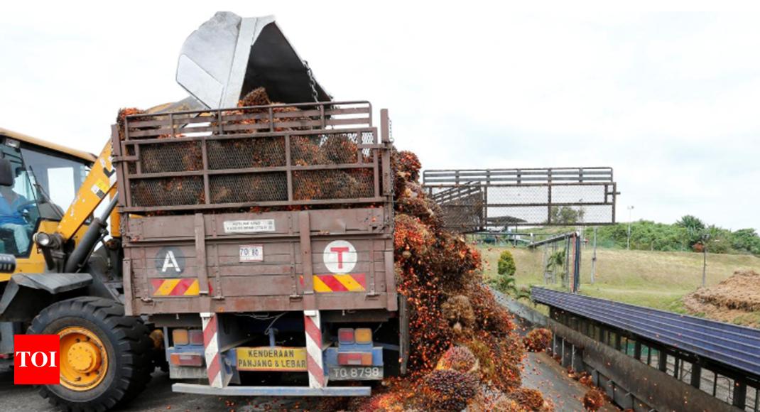 Shun Malaysia, India's palm oil buyers told amid Kashmir standoff