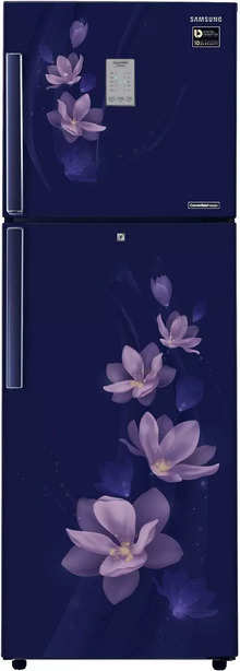 Samsung 275 L 4 Star Frost Free Double Door Refrigerator (RT30M3954U7/HL, Magnolia Blue)