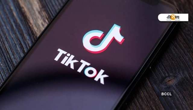 TikTok-owner ByteDance clocks first-ever profit in India: Report