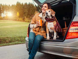 Study reveals your pets influence the car you choose