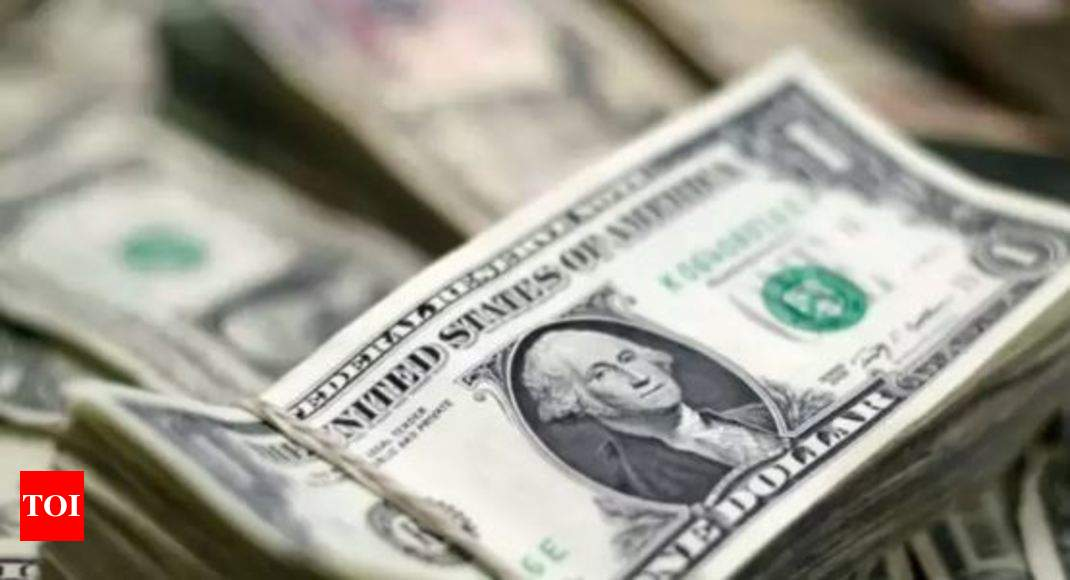 Forex reserves soar to new lifetime high of $446 bn