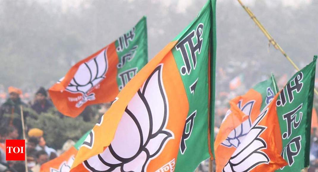 BJP's three-decade-prolonged stride from fringes to preeminence riding on Ram Janmabhoomi stride thumbnail