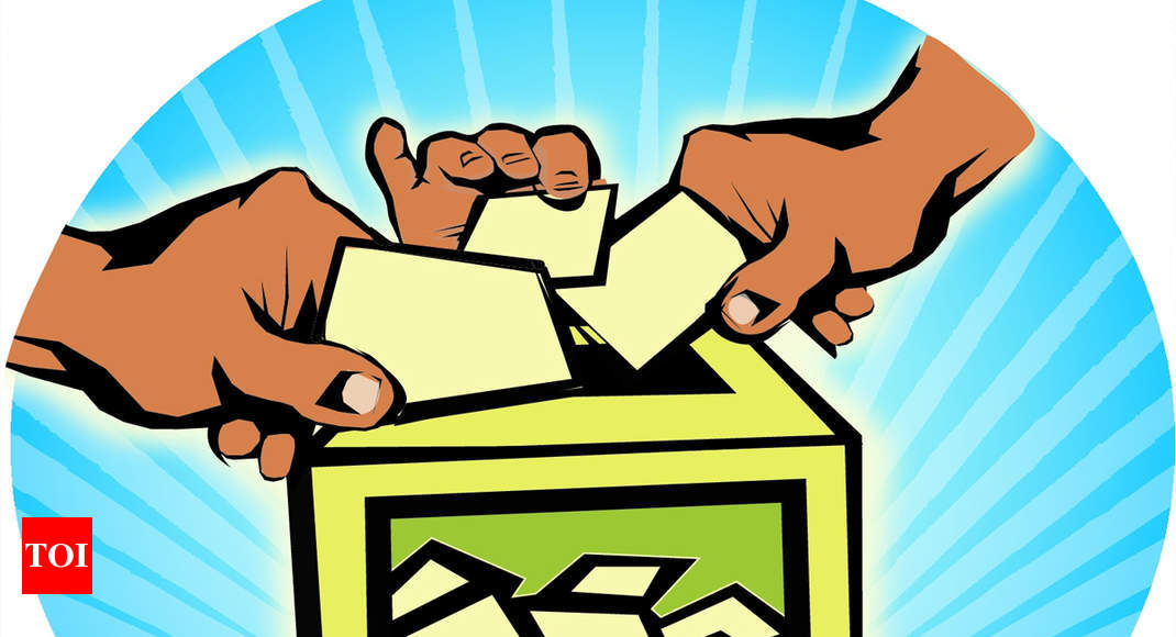 Margao council chief elections on November 22 - Times of India