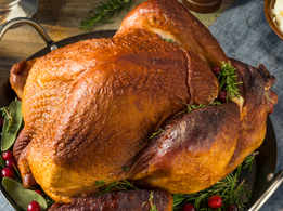 Thanksgiving Special: Roasted Turkey