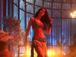 Meet the talented & gorgeous Bollywood actress Warina Hussain...