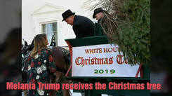 The White House gets all set for Christmas
