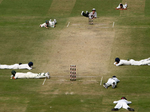 Unbelievable pictures of cricket matches interrupted by animals, birds and insects