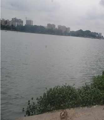 Mega Virus found in Mumbai's water