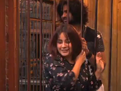 BB13: Shehnaz, Vishal re-enact Dev-Paro