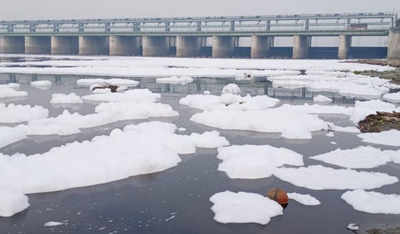 Image result for Thick toxic froth engulfs Yamuna in Mathura