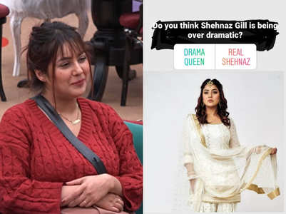 BB13: Is Shehnaz a drama queen? Fans react