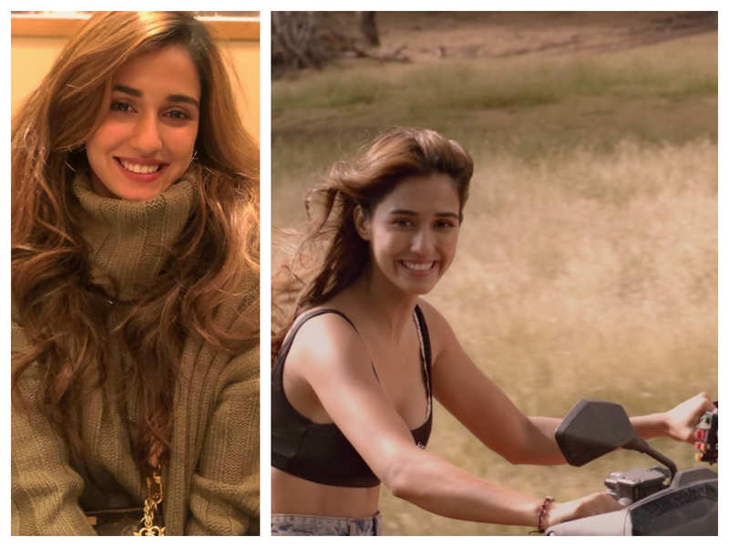 Malang Disha Patani Underwent These Training For Her Next With Aditya Roy Kapur Hindi Movie News Times Of India