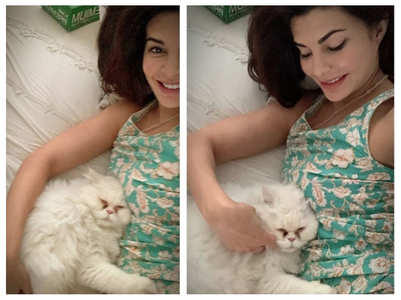 Jacqueline's pics with her cat are adorable!