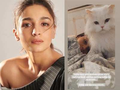 Alia hurts her back; pet cat shares an update