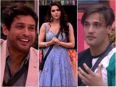 BB13: Madhurima on Sid and Asim's friendship