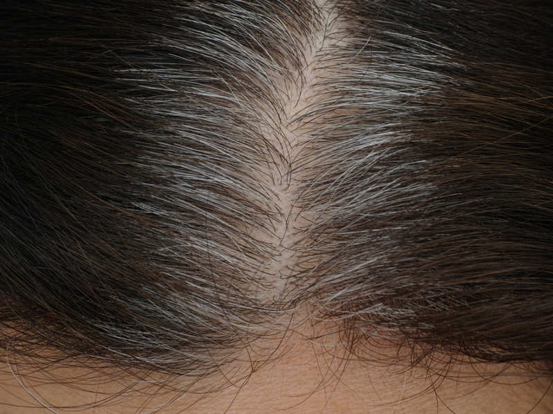 Scientists reveal the REAL reason why your hair is turning grey
