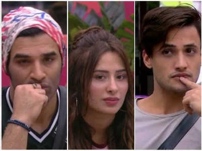 BB: Asim claims Paras-Mahira have lovers