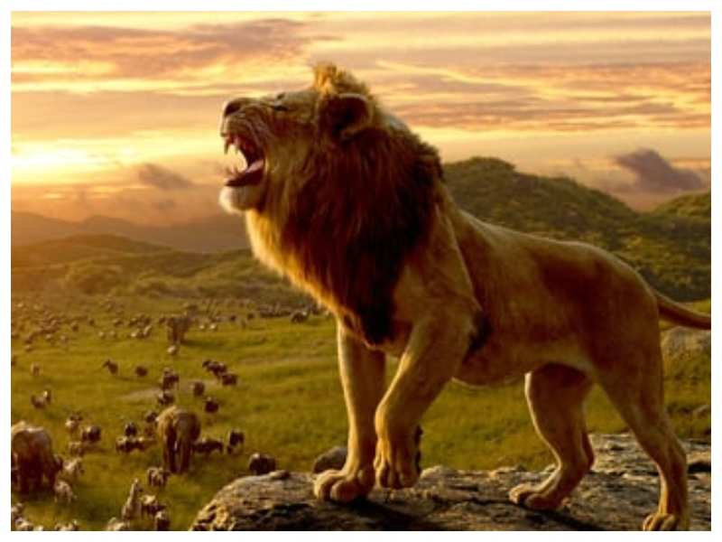 The Lion King Wins 3 Titles At Visual Effects Society Awards English Movie News Times Of India
