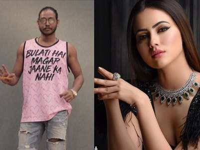 Sana Khan's cryptic comeback for Melvin