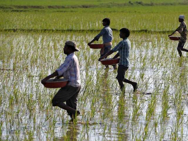 Government launches mobile app to broaden reach of PM-Kisan scheme