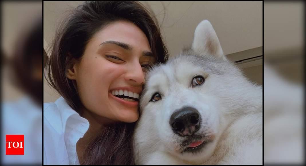 Атия Шетти делится фотографиями со своим псом и говорит: «Вы не бросите членов своей семьи, поэтому не оставляйте своих домашних животных» | Хинди Новости Кино