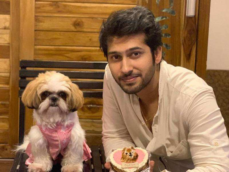 Namish Taneja: In such trying times, I am at home and pampering my pet