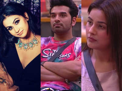 Paras unfollows Aanchal; Is Mahira behind it?