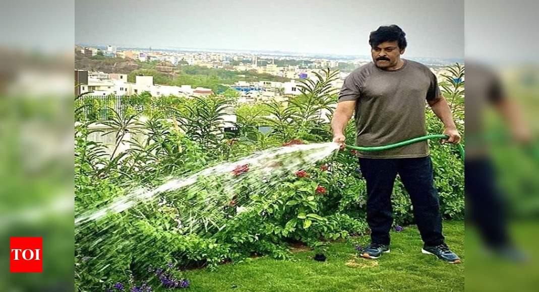 Чирандживи рассказывает о своем «утреннем дежурстве» во время блокировки Коронавируса! | Хинди Новости Кино