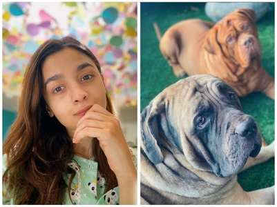 Alia captures RK's poochies in her lenses