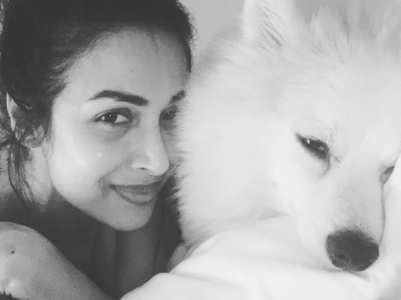 Malaika shares pic with her furry friend