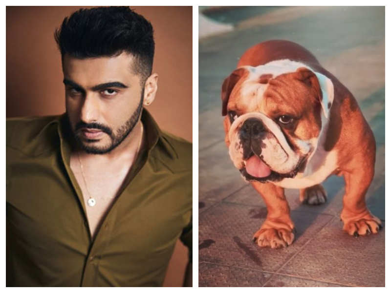 Arjun Kapoor shares a picture of his dog Maximus with a hilarious post