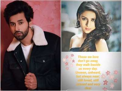 Shashank remembers his late co-star Pratyusha